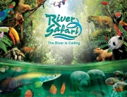 river-safari
